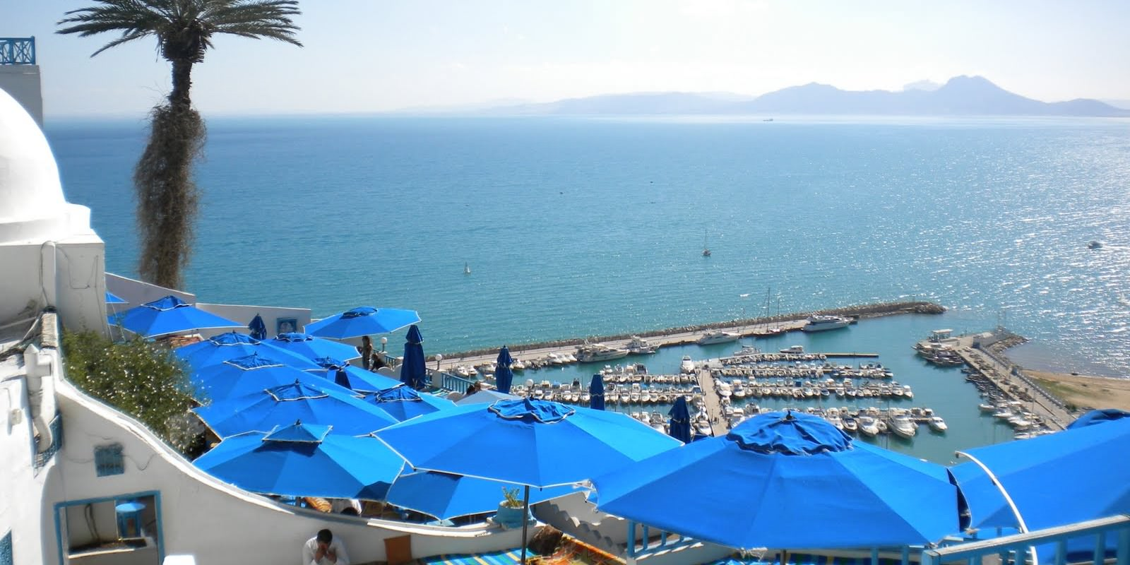 Sidi Bou Said, The Blue and White Treasure!